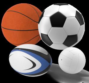 pelota futbol basket rugby voley